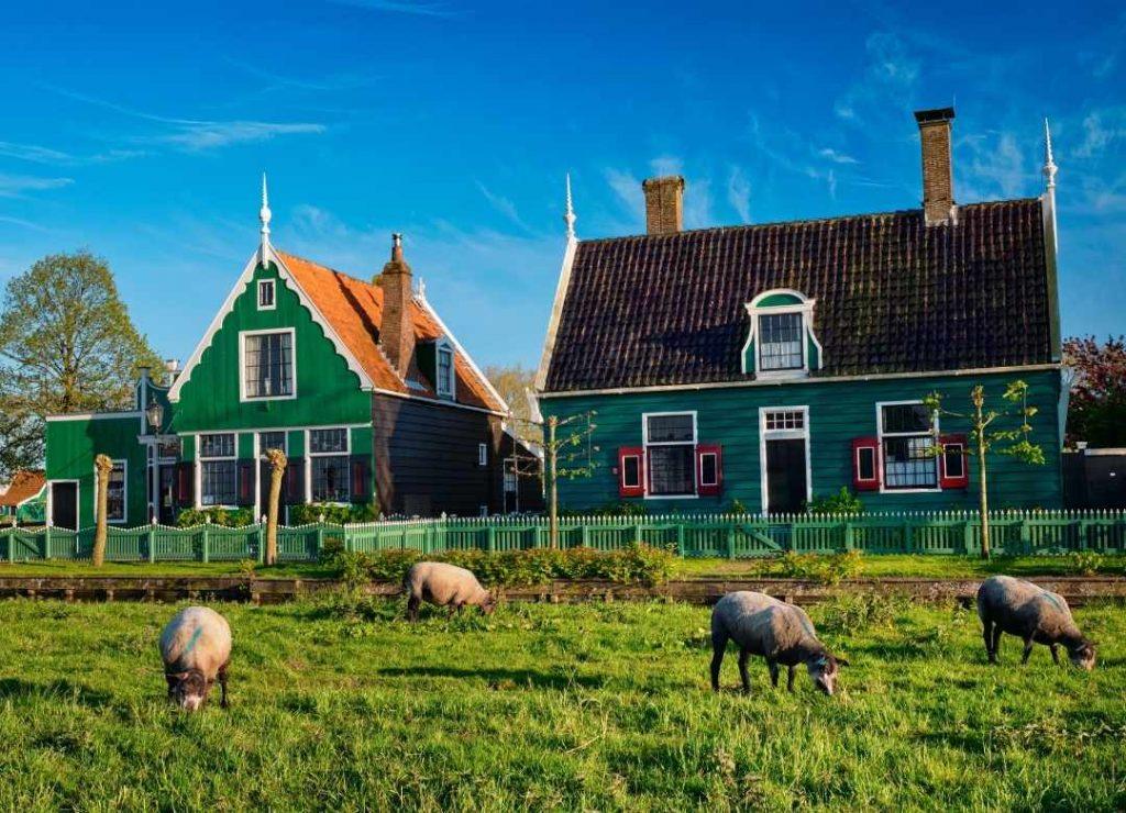Farmhouse Ideas - Looks on a Budget
