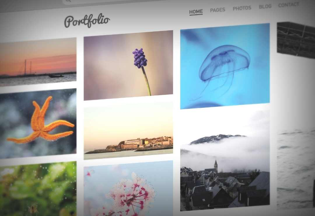 Curious to discover our current works This is our updated full Portfolio